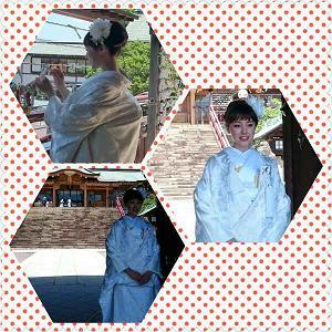 IMG_20150903_16705.jpg